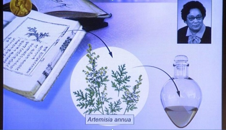 Medizin-Nobelpreis über Malaria Youyou Tu - Akupunktur..