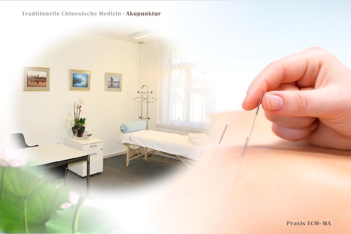 苏黎世 马氏汉医诊所 针灸1 TCM-MA Akupunktur